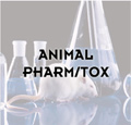 Animal pharm/tox